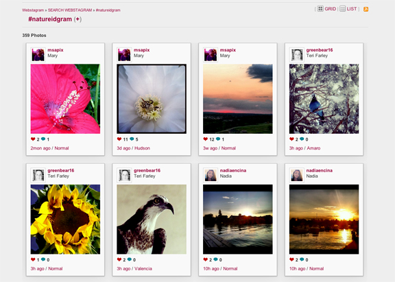 Instagram Scavenger Hunt - screenshot of webstagram page August 28, 2012